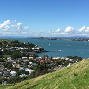 Auckland overview 2